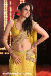 Rakul-Preet-Singh-New-Stills-(1)2899 copy.jpg