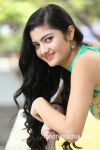 actress-akshitha-new-pics-satya-gang-press-meet-21caa0e copy.jpg