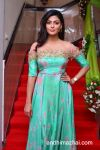 anisha_ambrose_new_stills_3004170234_018 copy.jpg